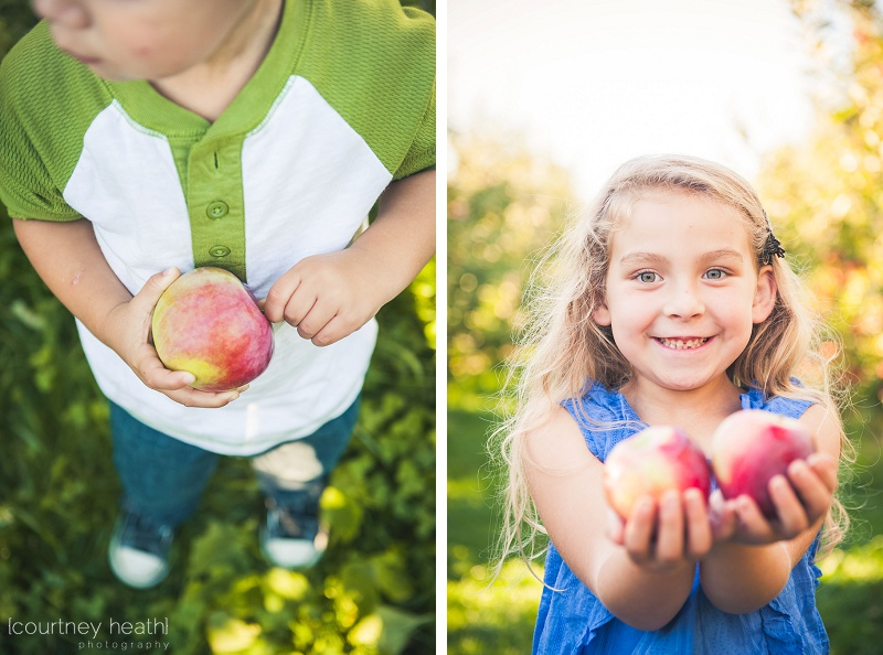 Boy and girl holding apples at apple orchard