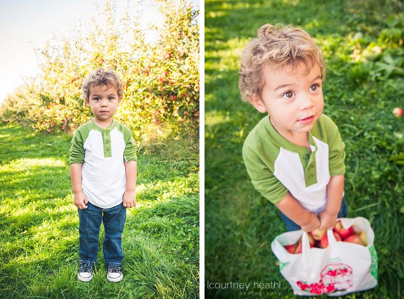 Boy holding large bag of apples