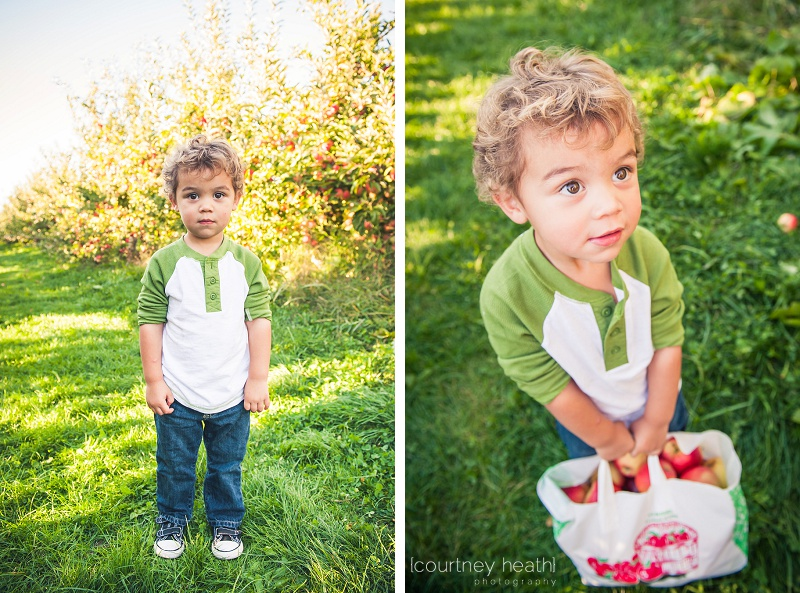 Boy holding large bag of apples
