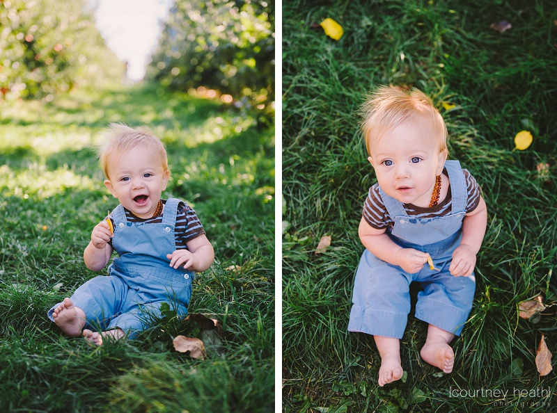 Happy baby in overalls sitting at an apple orchard