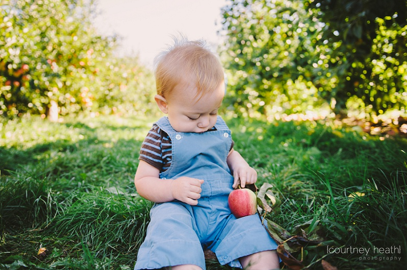 Chunky baby wearing overalls at an apple orchard